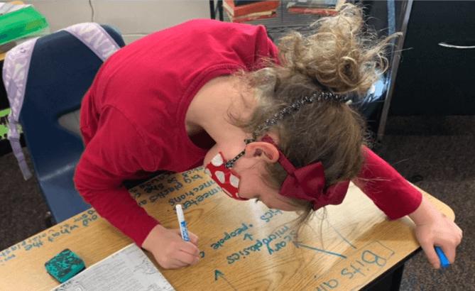 Sea Turtle Inquiry Project